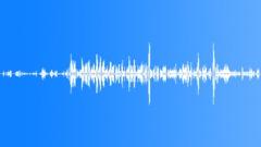 Sports Hockey Skate Onboard Crisp Exterior Various 2 Sound Effect