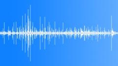 Horses Feet Cobblestone Horse Pass By Cobblestone Slow Speed Trot Clops BG Voic Sound Effect