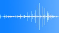 Horses Horses Group Cobbles By Walk Voices Sound Effect