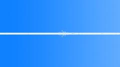 Jungle Jungle Atmos Saipan MS 1 constant cricket drone hush. Medium distant bir Sound Effect