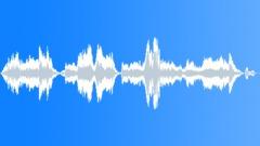 Crowds Kids Voices Group Kids Several Scream Anguish Sound Effect