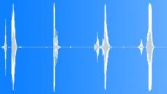 Animals Lions Single Lion Cub Vocalization Talk Series x 4 Soft Moves Attached Sound Effect