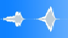 Animals Lions Lion Vocal Painful Talk Hurt Calls Loud Close Up Exterior Dual Mo Sound Effect