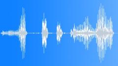 Animals Buffalo Bison Low Grunts x 2 Deep Calm Big Snorts Fierce ECU Exterior L Sound Effect