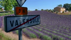 Countryside Country French Landscape With Lavender Fields In Provence France. Stock Footage