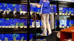 Worker catching fish for customer inside Petsmart store Stock Footage