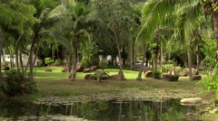 In green solar jungles of southeast Asia. Resort area with palm trees. 4K Stock Footage