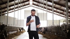 Man texting on smartphone and cows at dairy farm Stock Footage