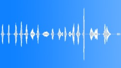 Voices Man Yells Whooa Fun Doppler Sound Effect