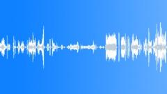 Squeaks Scrapes Metal Screech Shriek Rake Sound Effect