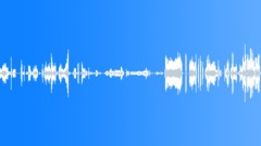 Squeaks & Scrapes Metal Screech Shriek Rake Sound Effect
