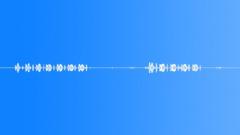 Birds Owls Owl Calls Series x2 Birds Chirps Medium Dist Exterior Sound Effect