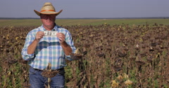 Farm Owner Wealthy Agronomist Farmer Man Prosperity Showing USD Business Symbol Stock Footage