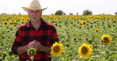 Farmer Speaking TV Interview About Sunflower Business in Agriculture Industry Stock Footage