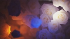 Flowers Transition  Animation  with Transparency and Rotation (Alpha Channel)  Stock Footage