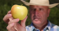 Cultivator Testing Golden Apple Farmer Man Looking Juicy Fruit Close Up Image Stock Footage