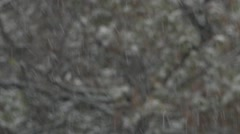Blurred background. Texture. Winter. It's snowing. Snowflakes fall. Stock Footage