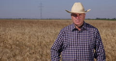 Responsible Farm Owner Looking to Camera Confident in His Wheat Culture Business Stock Footage
