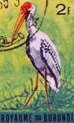BURUNDI - CIRCA 1960s: A stamp printed in Burundi shows a Ibis ibis, circa 1960s Stock Photos