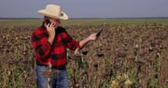 Farmer Talking Phone Use Touch Tablet for Reporting Sunflower Research Data Stock Footage