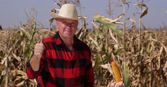Agriculture Industry Farm Worker Showing Thumbs Up Sign for Best Cornfield Crop Stock Footage