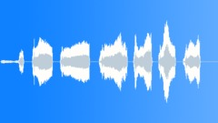 Animals Pigs Potbelly Pot Belly Scream Shriek Shrill Sound Effect