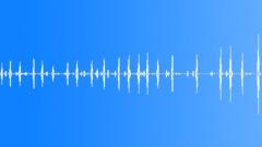 Birds Various Sandhill Crane Single Vocal Calls Raspy Squawks Small Group Chat Sound Effect