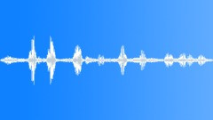 Birds Various Redhill Crane Vocals Single Loud Squawks ECU Exterior BG Busy Caw Sound Effect