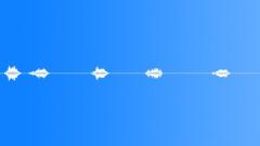 18th Century Saw 2 Man MS Strokes Fast Singles x5 Some BG birds Sound Effect