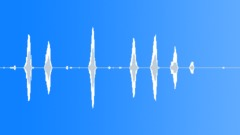 Animals Dogs - Dog English Sheepdog Sheepdog Bark Hoarse Anxious Sound Effect