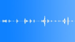 Animals Dogs - Dog English Sheepdog Sheepdog Whine Anxious 2 Sound Effect