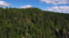 Aerial high shot of vast pine tree forest in Nova Scotia Canada Stock Footage