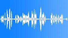 Backgrounds The Cook Islands Rarotonga Atiu Mangai Vocal SlateKids playing socc Sound Effect