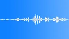 Backgrounds The Cook Islands Rarotonga Atiu Mangai Vocal SlateRain Forest Canop Sound Effect