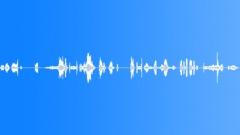 Sound Design Vacuum Processed Doppler Short Squeak Series Suction Skin Balloon Sound Effect