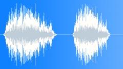 Sound Design Vocal Growl Roar Series x2 Low Rumble Rough Big Close Up Sound Effect