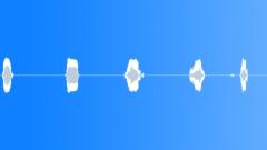 Sound Design Vocal Sound Design Vocal Snarl with Cloth Rip Sound Effect