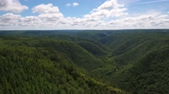 Aerial shot of a deep gorge and a mountain forest Stock Footage