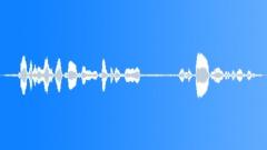 Backgrounds The Cook Islands Rarotonga Atiu Mangai TAIL Vocal SlateORCHARD CONS Sound Effect