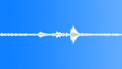 Sports LA Derby Dolls Track Roller End Training Talk Coach Speech Players Answe Sound Effect