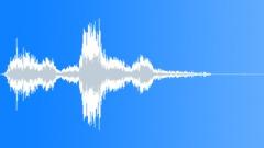 Birds Hawks Two Hawks Scream x 2 Loud Calls Close POV Exterior Sound Effect