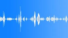 Water Underwater Hydrophone Uruguay Underwater Voice Male Groan Grunt Strange W Sound Effect