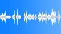 Voices Vampire Chirps Bat Cave - quick chirps Sound Effect