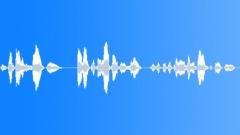 Voices Urban Voice Female Attendant Travel Sound Effect