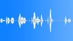 Words Phrases Various Voice Male Cop Arrest 1 Sound Effect