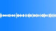 Voices Urban Voice Male News Sex Offender Sound Effect