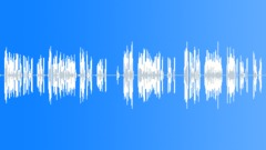 Voices Arabic Radio Calls Walkie Talkie Male Crowd Talk Chat Orders Military No Sound Effect