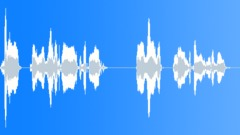 Voices Polish Female Single Young Phrase English Polish Check In Desktop Take 0 Sound Effect