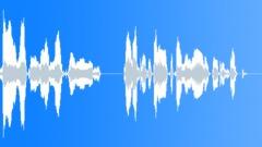 Voices Polish Female Single Young Phrase English Polish Salute Take 02 Stewarde Sound Effect
