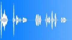 Voices Polish Female Single Young Phrase English Polish Salute Take 04 Stewarde Sound Effect